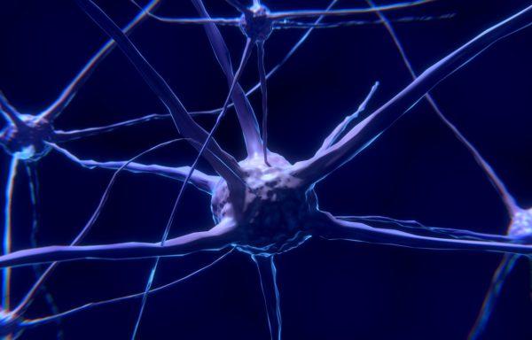 Актуальные вопросы диагностики и лечения инфекционных поражений нервной системы (36 часов)