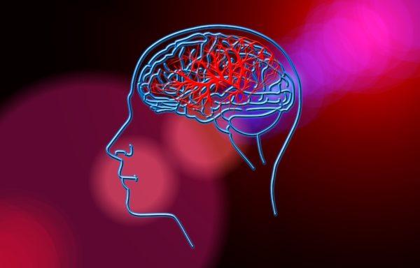 Избранные вопросы сосудистых заболеваний нервной системы (36 часов)