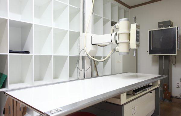 Рентгенология (432 часа)